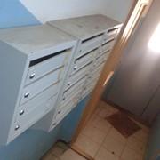 Распространение листовок по почтовым ящикам, Минск фото