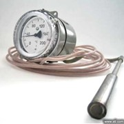 Термометры показывающие фото