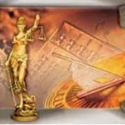 Представительство интересов в судах и госорганах. фото