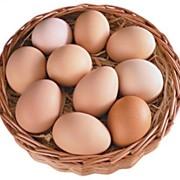 Продам яйцо куриное на постоянной основе кат С0, С1 фото