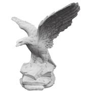 Форма орла фото