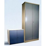 МиФ 106Г Шкаф гардеробный с металлическими дверями фото