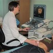 Ультразвуковые исследования органов брюшной полости фото