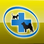 Эвтаназия(усыпление) животных 093-408-09-36 фото