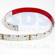 LED лента открытая, ширина 16 мм, IP23, SMD 2835, 96 диодов/метр, 24V, цвет светодиодов белый, 2200 лм/м фото
