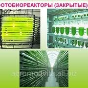 Биотопливо в Молдове, биотопливо купить фото