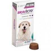 Таблетки Bravecto (Бравекто) от блох и клещей для собак массой >40 — 56 кг фото
