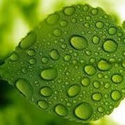Проектная экологическая документация фото