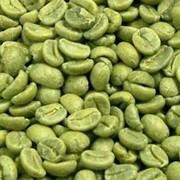 Зеленый кофе в зернах для похудения фото