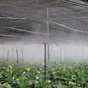 Компенсатор распылитель (туманообразователь) фото