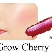 ROSETTE LIP & CHEEK My Melody Бальзам для губ, 4гр, тон Grow Cherry фото