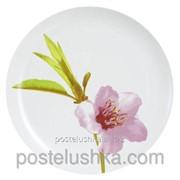 Тарелка обеденная Luminarc Water Color 250 мм E4891 фото