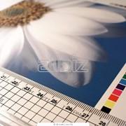 Услуги полиграфические, услуги полиграфические Марганец фото