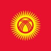 Экспорт из России в Кыргызстан фото