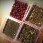 Medicinal herbs фото