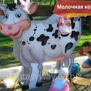 "Аттракцион ""Молочная корова и дойная коза"" фото"