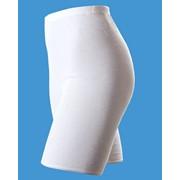 Панталоны женские с начесом 1/27/005 фото