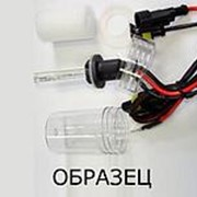 Лампа ксенон H4 (биксенон температура 4300К разьем AMP) фото