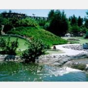 Приключенческая мини-гольф площадка фото