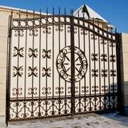 Ворота кованые распашные VR6 фото