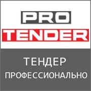 Подача заявки на тендер, подготовка документов фото