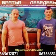 Обслуживание аквариумов от 150 грн. фото