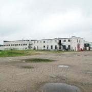Производственное здание в Вилейке фото