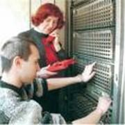 Системная Интеграции Телефонных Сетей фото