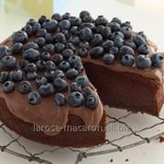 Торт Жасмин шоколадный-медовый с черникой фото