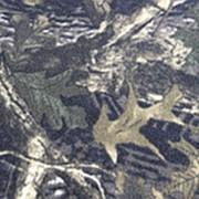 Ткань Флис (Polarfleece) Камуфляж С-14 фото