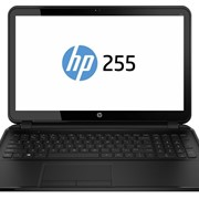 Ноутбук HP 255 G2 (F0Z65EA) фото