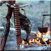 Путевки на охоту фото