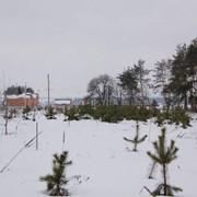Бобрица, участок 5 соток Д/К Сузирье. Риелтор: Ярослав фото