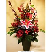 Доставка цветов Херсон фото