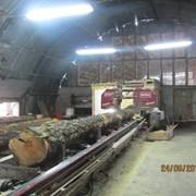 Действующее предприятие по выпуску деревянных конструкций из клееного бруса фото