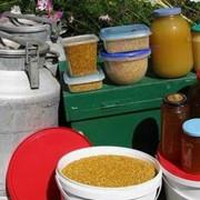 Продаю мёд и цветочную пыльцу в Краснодаре фото