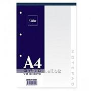 Тетрадь A4, 70 листов, с перфорацией, в клетку FO42501 фото