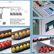 Линия электронная сортировочная UNI_ONE фото
