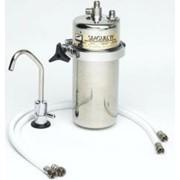 Система очистки питьевой воды Seagul IV X-2KF фото