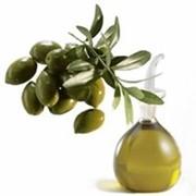 ПЕГ-7 карбоксилатное оливковое масло, RESASSOL COL фото