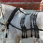 Упряжь для лошадей. фото