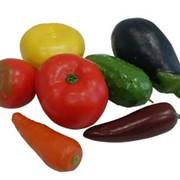 """Муляжи """"Овощи"""", муляжи овощей фото"""
