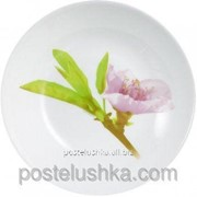 Тарелка суповая Luminarc Water Color 200 мм J0765 фото