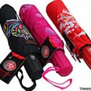 Зонтик-хамелеон фото