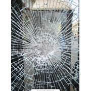 Сбор, сортировка и поставка стеклобоя на стеклозаводы фото