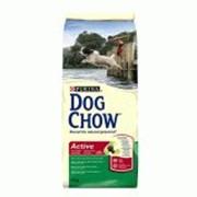 Корм Dog Chow Active, Дог Чау для взрослых активных собак 14 кг фото