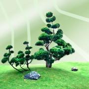 Услуги по посадке деревьев, кустарников и крупномеров фото