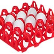 Пластиковая ячейка для индюшиных яиц фото