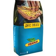 Насіння кукурудзи Монсанто DKC3511 ua Пончо, міш фото