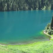 Экскурсии на Кольсайские озера фото